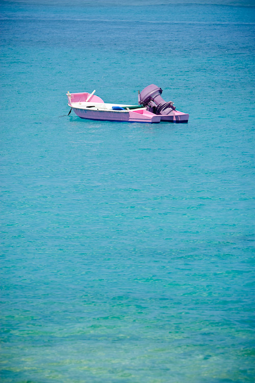 Photo of pink boat.