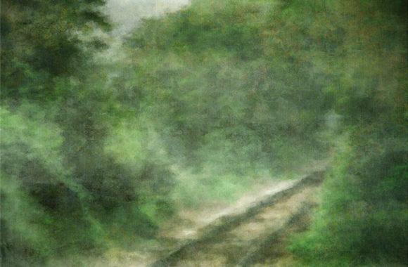 Summer Rails